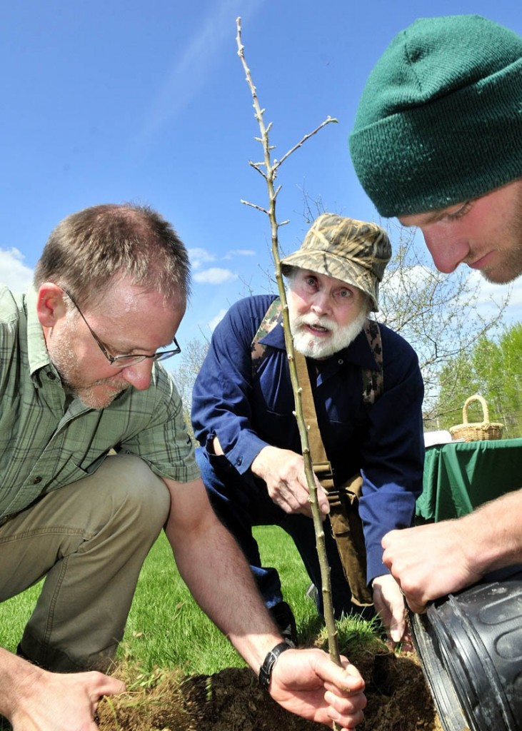 Unity College alumnus John Chapman of Athens, center, watches as professor Doug Fox, left, and student Brian Thiebault plant an apple tree sapling from American pioneer John Chapman, aka Johnny Appleseed, on Thursday. The sapling is an original apple tree lineage from the early 1800's.