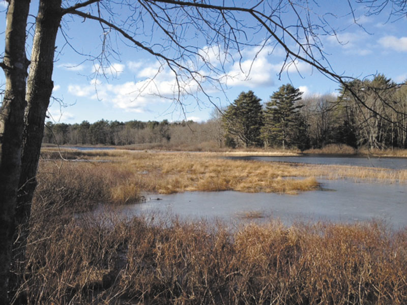 SOMETHING TO SEE: Boyd Pond, a wide section of the Pemaquid River, is one of the attractions for hikers traversing the many trails at Crooked Farm Preserve in Bristol.