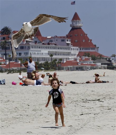 """In this May 22, 2012 photo, a child chases a sea gull on the Coronado Beach in Coronado, Calif. The Coronado Beach has been named America's best beach. Coronado Beach tops the 2012 list of Top 10 Beaches produced annually by coastal expert Stephen P. Leatherman, also known as """"Dr. Beach,"""" director of Florida International University's Laboratory for Coastal Research. (AP Photo/Lenny Ignelzi)"""