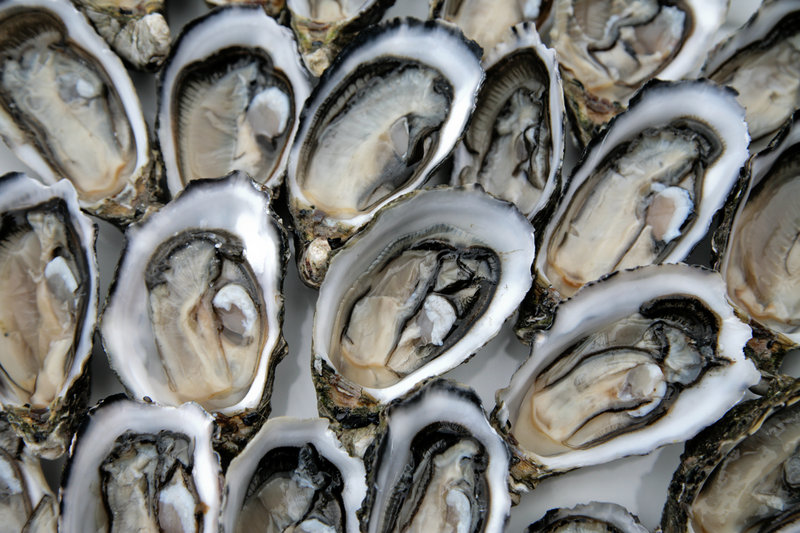 In this file photo, Oysters Mignonette. The FDA is warning people not to eat raw or partially cooked shellfish harvested from New York's Oyster Bay Harbor because they have been linked to cases of foodborne illness in several states, including Maine.