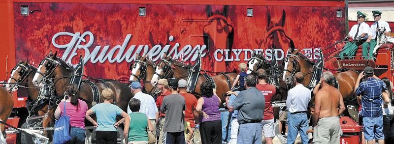 The Budweiser East Coast hitch Clydesdale team leaves the Concourse as they parade through downtown Waterville as part of the Taste of Greater Waterville on Wednesday.