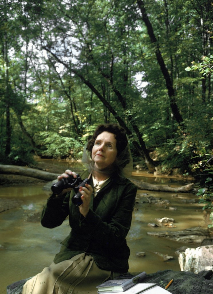 Rachel Carson pauses in the woods near her home in 1962. She became the grand dame of the environmental movement with the publication of her book that year, which questioned the unrestrained use of pesticides and became pivotal in the banning of DDT 10 years later. She died of breast cancer in 1964.