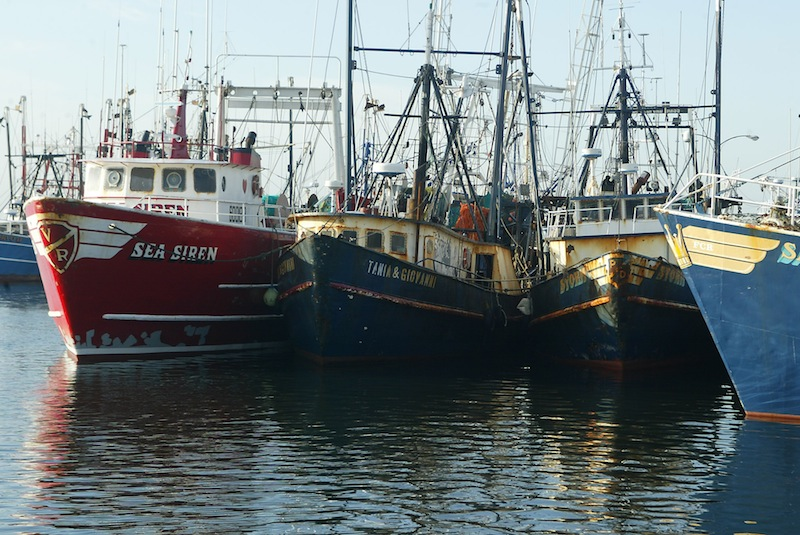 This April 30, 2004 file photograph shows fishing boats docked at the pier in New Bedford, Mass. The U.S. seafood catch reached a 17-year high in 2011, with all fishing regions of the country showing increases in both the volume and value of their harvests. New Bedford, Mass., had the highest-valued catch for the 12th straight year, due largely to its scallop fishery. (AP Photo/Stew Milne)