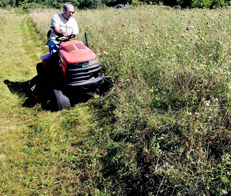 "GAS SAVER: Mike Dyer slowly cuts 2-foot high grass at his home in Vassalboro on Monday. ""I'm knocking this grass down now because it's getting big,"" Dyer said. Gas was high this summer so I didn't bother to mow."""