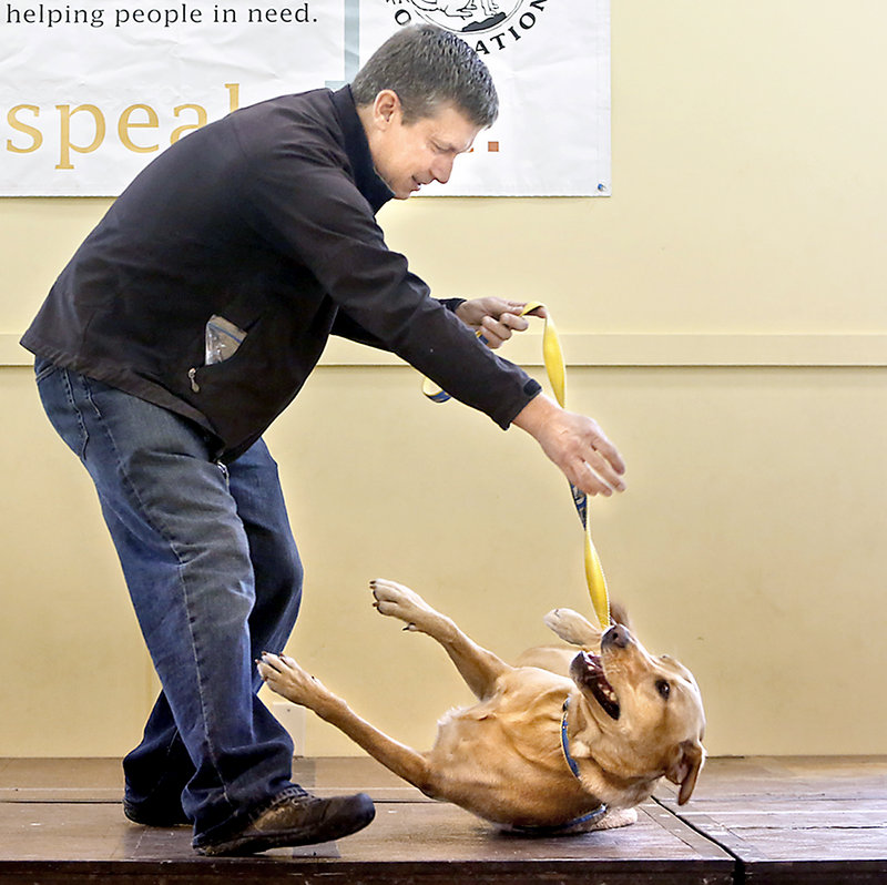Mike Collins of Portland encourages his dog Teddy to roll over during the best trick event to try to win a trophy at the Woofminster Amateur Dog Show.