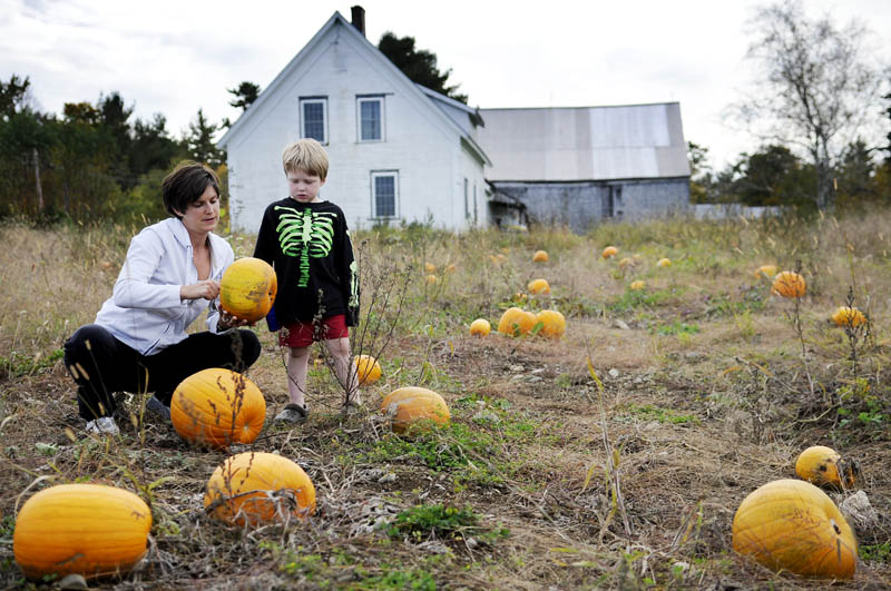 BIG CHOICE: Sam Hayes, 5, helps his mother, Leah, choose a pumpkin for their Mount Vernon home Tuesday at the Pine Bluff Farm in Mount Vernon. The couple picked a pumpkin from the patch and a smaller gourd from the farm stand.