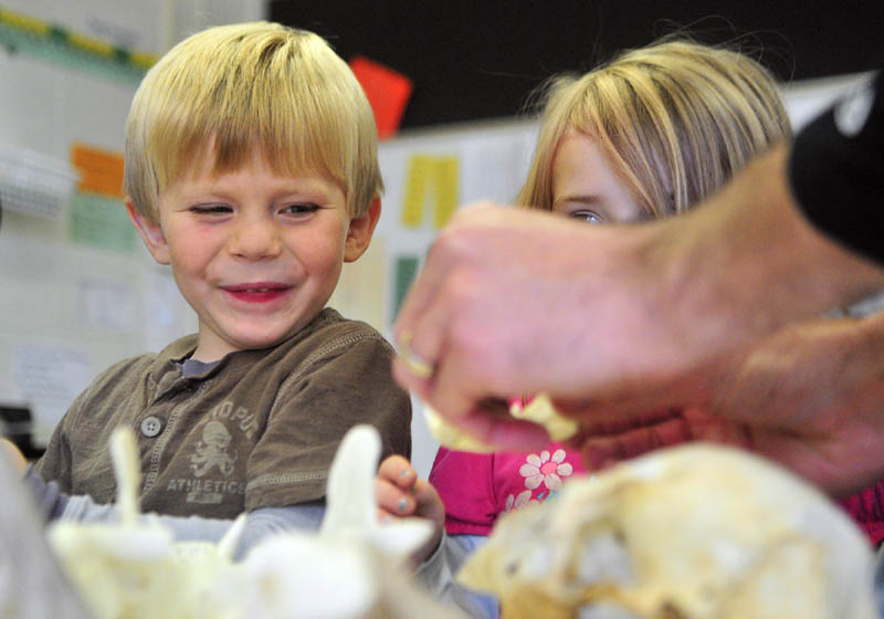 Cody Spinson, left, and Delia Whithee look at skulls on Wednesday afternoon at Gilbert School in Augusta. Leigh Rose, from the L. C. Bates Museum outreach program, has been visiting the school as part of six week program.