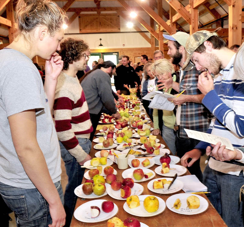 Anna Carolsfeld and Justin Giroux, right, sample some of the 70 varieties of apples during the 2012 Great Maine Apple Day, at the Maine Organic Farmers and Gardeners Association site in Unity, on Sunday. The annual event celebrates the history, flavor and tradition of Maine apples.