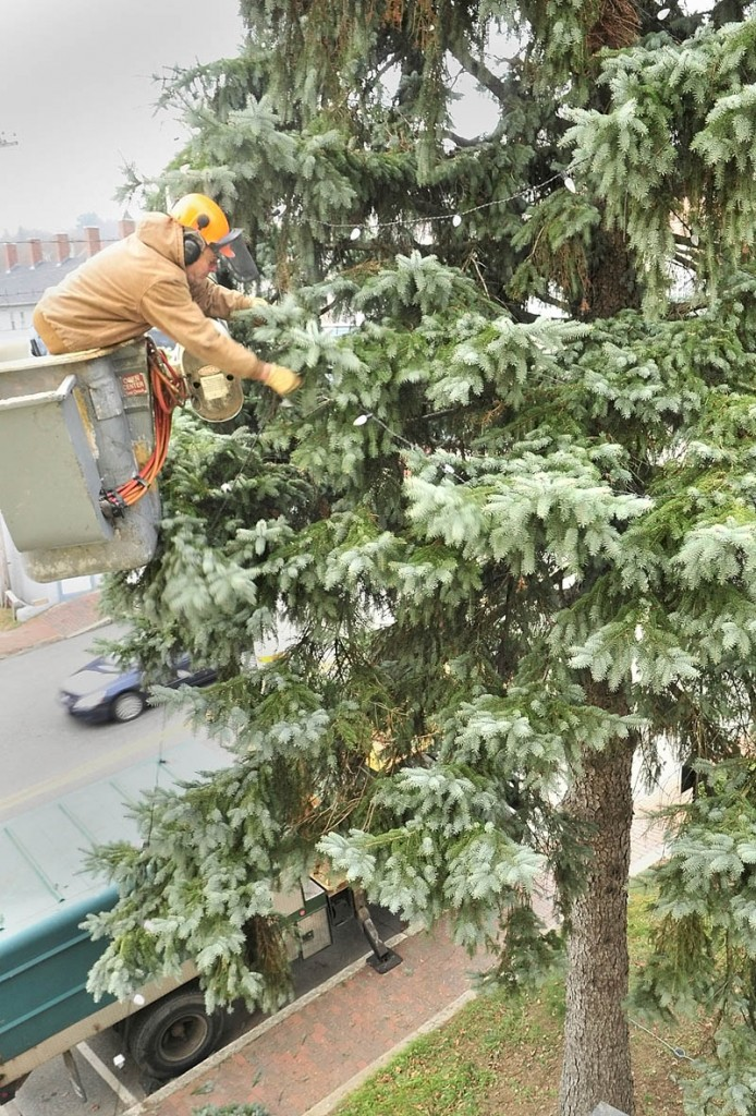 Working from a boom truck, Jon McKenney, of McKenney Tree Service, strings lights on a large tree between the City Hall and RE/MAX Capital Chris Vallee Associates on Winthrop Street in Hallowell.