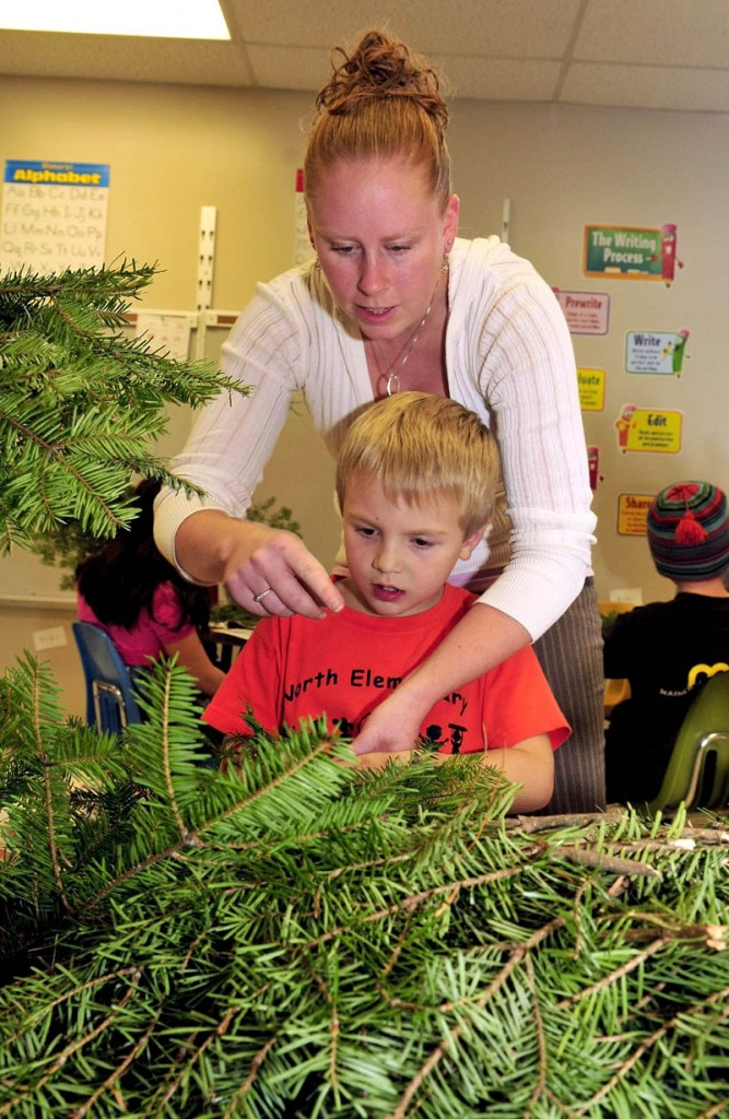Cornville Regional Charter School teacher Ashlee Savage helps student Adam Archer make a holiday decoration with fir boughs recently.