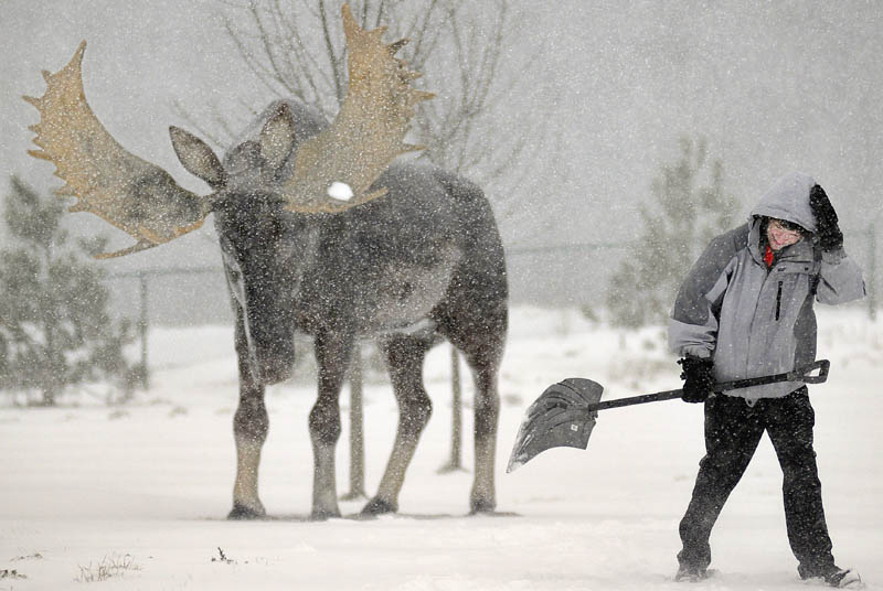 """Aaron Richards dashes to the next spot to shovel Thursday December 27, 2012 while cleaning up snow at the West Gardiner Service Plaza and Rest Area. Workers were digging Maine Turnpike travelers out of a foot snow at the plaza, which is adorned with several sculptures, including moose and bear. """"I should have a face mask,"""" Richards said of shoveling in the high winds."""