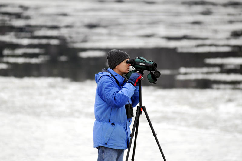"""Glenn Hodgkins, of Hallowell, searches for birds with a spotting scope Tuesday, between ice floes on the Kennebec River in Hallowell. The avid birder said he searches for avian species """"any time I can get an excuse."""" He was attempting to locate a drake wood duck that had been spotted on the river earlier."""
