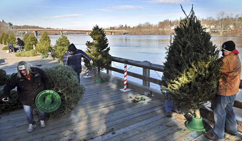Volunteers arrange fir trees Sunday on the Kennebec River in Gardiner for the Festival of Trees, to raise money for Gardiner Youth Hockey. Each of the 25 trees erected at the waterfront were decorated by local businesses which contributed to the fundraiser and raffle held in the evening.
