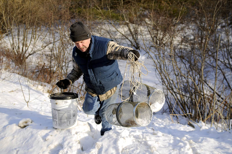 Conrad Gardiner lugs a pair of traps and a bucket from a stream in Hallowell on Tuesday. Gardiner said he was switching the bait traps to another stream to catch shiners for ice fishing bait.
