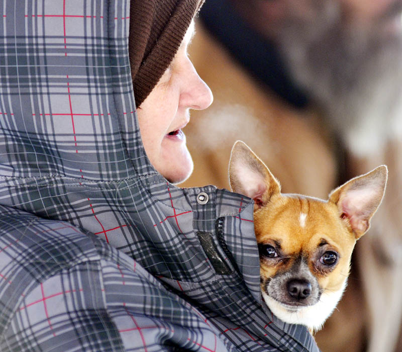 """Amy Hopkins clutches her dog to her chest Monday at the Augusta Community Warming Center. Hopkins, her husband and son were evicted Monday from their room in Augusta, she said, following a dispute with another tenant at a boarding house. """"We're homeless,"""" she said. The Hopkinses took turns heating up between holding the dog, which she said isn't permitted in the center, as temperatures struggled to reach double digits. The cold is forecast to persist for the remainder of the week."""