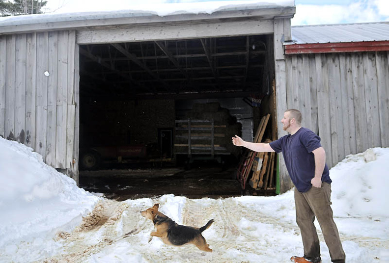 Isaiah Chase chucks a snowball Tuesday for his hound at his family's farm in Whitefield. Chase had just finished retrieving hay for the herd of cows and feeding his pair of pulling steers with the dog.