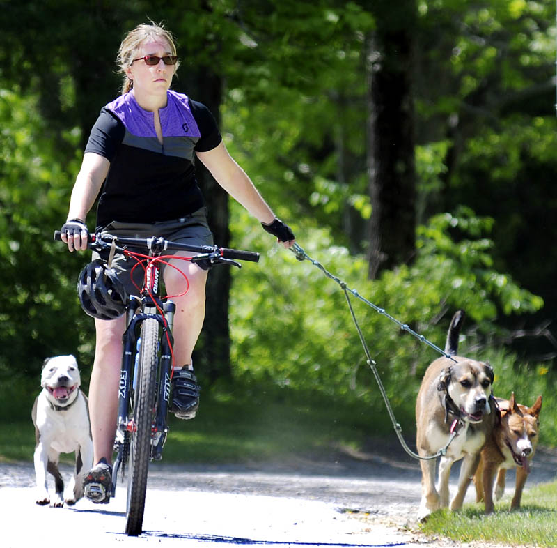 Beth Sours, of West Gardiner, leads her trio of dogs back to her car in Hallowell on Thursday during a ride and run through the woods of Manchester and Hallowell. The veterinarian said she rode about ten miles with her pooch escorts.