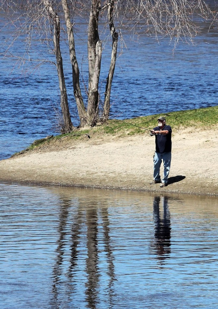 """George Hughes, of Oakland, said he noticed a lot of alewives recently and expected striped bass soon while fishing at the confluence of the Sebasticook and Kennebec Rivers in Winslow on Friday. """"The stripers usually arrive two to two and half weeks after you start seeing alewives,"""" said Hughes."""