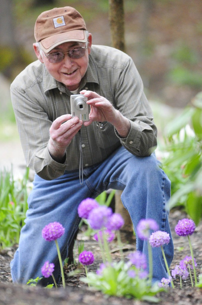Fred Davis takes a photograph of the primrose blooming in front of Fred's Puzzles and Gifts on Thursday in Palermo. Davis said that he and his wife work in the gardens outside the business on Route 3 near the Palermo - China border.