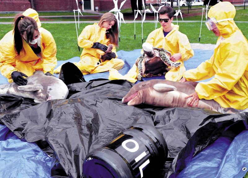 Student members of Colby Alliance of Renewable Energy group took part in a simulated oil spill that contaminated birds and animals on campus on Thursday. From left, Ruthie Hawley, Carla Nyquist, Jacob Wall and Janice Liang.