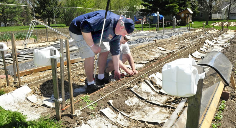 Deon Lyons, left, who is blind, is assisted by visually impaired gardener David Perry to use rope sight lines to help locate vegetable rows and allow successful gardening in a plot in Fairfield.