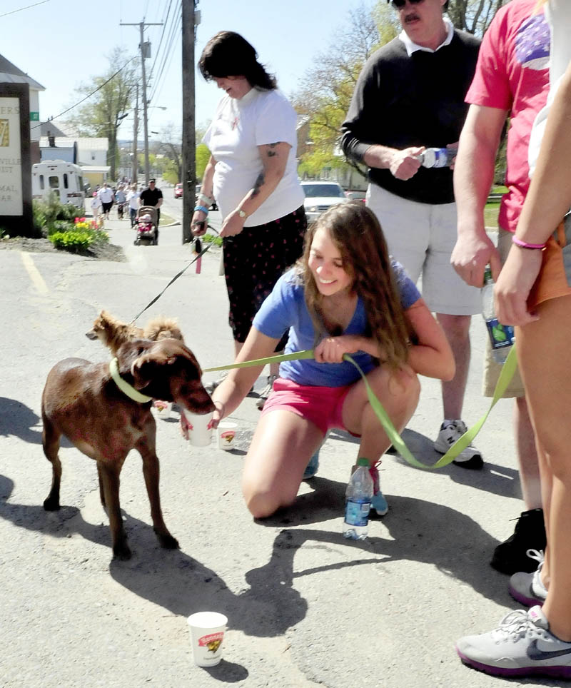 Kayla Turner holds a cup filled with water for her thirsty dog, Henry, during a water stop on Main Street in Waterville for the Humane Society Waterville Area's Pet-a-Thon fundraiser walk on Sunday. Dogs and their owners, who had collected pledges for the event, walked a 3-mile course.