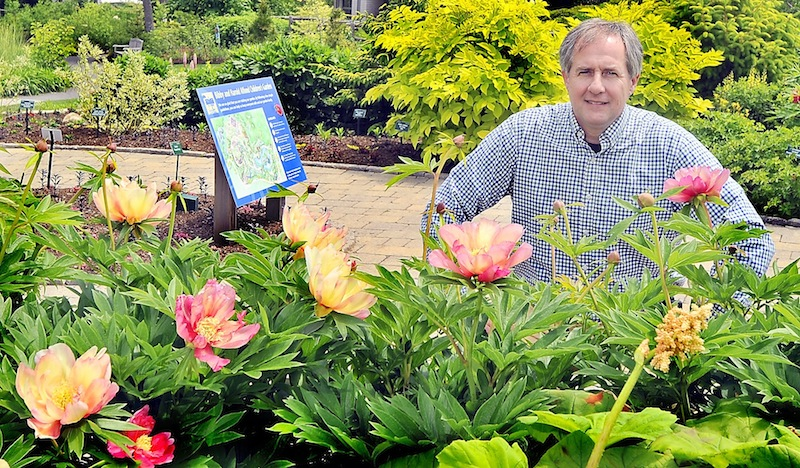William Cullina, executive dorector of Coastal Maine Botanical Gardens, is surrounded by hybrid Peonies and a multitude of other plants in the Bibby and Harold Children's Garden. He and his organization won the Award of Excellence from the National Garden Clubs, Inc..