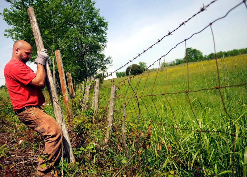 Bob Dill sets a fencepost Monday outside of a pasture at the E.C. Barry Farm in Farmingdale. Dill said he's upgrading all the pickets in the fields where beef cows graze for the summer.