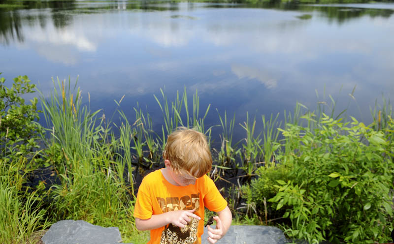Tyler Hanna inspects a freshly hatched snapping turtle Sunday that he caught with his father, Clint, near their home on Belgrade Stream in Belgrade. Father and son employed a net to snag a couple of juvenile snappers to examine before releasing them.
