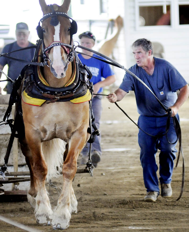 Gordon Libby, right, of Jefferson, guides his team of Belgians Sunday at the annual spring pull of the Maine Draft Horse and Ox Association, hosted at the Windsor Fairgrounds. Teams from across Maine scooted and pulled against each other during the weekend event.