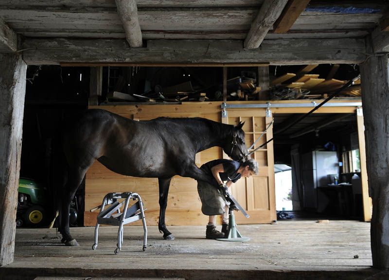 Farrier Ann Melville, of Durham, preps a thoroughbred for a new shoe Tuesday in the barn at Pleasant View Farm in Sidney. Melville, the proprietor of On Balance Farrier Service, was replacing the shoes on two steeds in the 19th Century barn that belongs to Jeff Fay, D.V.M.