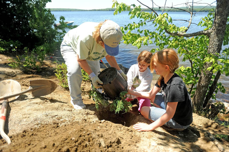 Linda Rice, left, helps Cornville charter school students Thalia Barden, 11, center, and Kaitlyn Vanvliet, 11, right, plant a juniper bush along the banks of North pond on Lakeview Drive in Smithfield as part of an erosion-prevention project on Wednesday.