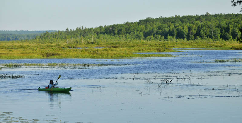 Christine Keller paddles along the Serpentine waterway, a three-mile waterway that cuts across a peat bog as it connects East Pond and North Pond on Thursday.
