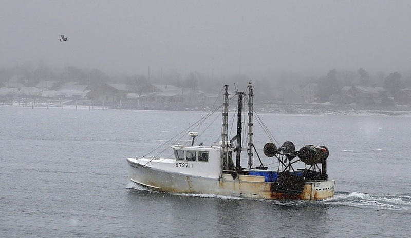 In this January 28, 2013 file photo, a ground fisherman makes his way back toward shore near the Portland Fish Pier. A proposed budget bill would provide $150 million in disaster relief funding to New England's groundfish industry and several other fisheries.