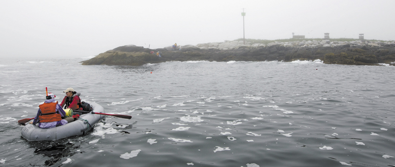 Field biologists row to shore from a moored boat at Eastern Egg Rock, a small island five miles off the Maine coast. Bird blinds used for monitoring puffins stand above the water line at right.