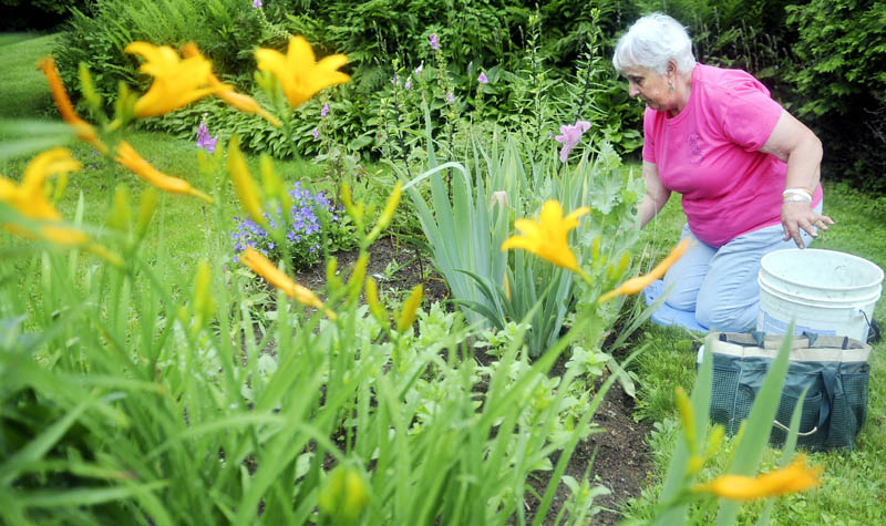 Molly Wicwire removes weeds Thursday from a flower garden at the Vaughan Homestead in Hallowell. Wicwire and other members of the Kennebec Valley Garden Club were sprucing up plots around the community, ahead of the Gardens of the Hallowell Area tour to be held Saturday from 9 a.m. and 3 p.m. The club has prepared eight gardens and some pocket gardens in the city. Tickets may be purchased through Saturday at D.R. Struck, Alden Longfellows, Longfellows Greenhouse and Berry & Berry Floral.
