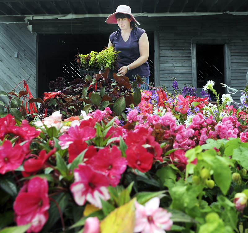 Susan Morin arranges flowers Sunday outside the greenhouses at her family's Readfield farm. Elvin's Farm is selling plants seven days a week, according to Morin's sister, Wendy Elvin, with produce expected to be available in a few weeks.