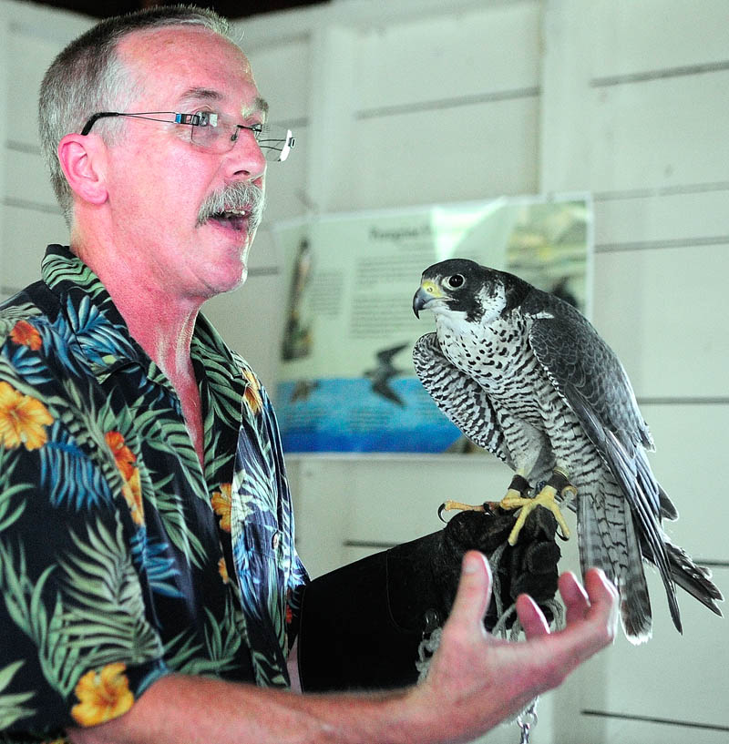 Falconer Larry Barnes talks about a Peale's peregrine falcon that he hunts ducks with in the winter, during a talk on Saturday in the boat house at the Steve Powell Wildlife Management Area of Swan Island, between Richmond and Dresden.