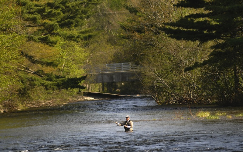 In this May 2011 file photo, David Swayze of New York City fishes in Grand Lake Stream, Maine. Maine now has no say over the terms of the 25-year licenses for two storage dams and two dikes that control water levels and flow in Grand Lake and Sysladobsis Lake in Washington County, one of Maine's premier areas for landlocked-salmon fishing, and a dam at Forest City Township, on the Maine-New Brunswick border, because the Maine Department of Environmental Protection has again missed critical deadlines.