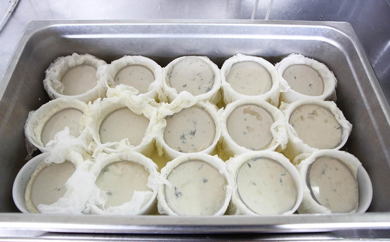 A tray of whole-milk ricotta cheese presses to allow excess moisture to drain out at Crooked Face Creamery in Skowhegan recently. This summer, the cheese won third place in the nation at the American Cheese Society Conference in Madison, Wis.