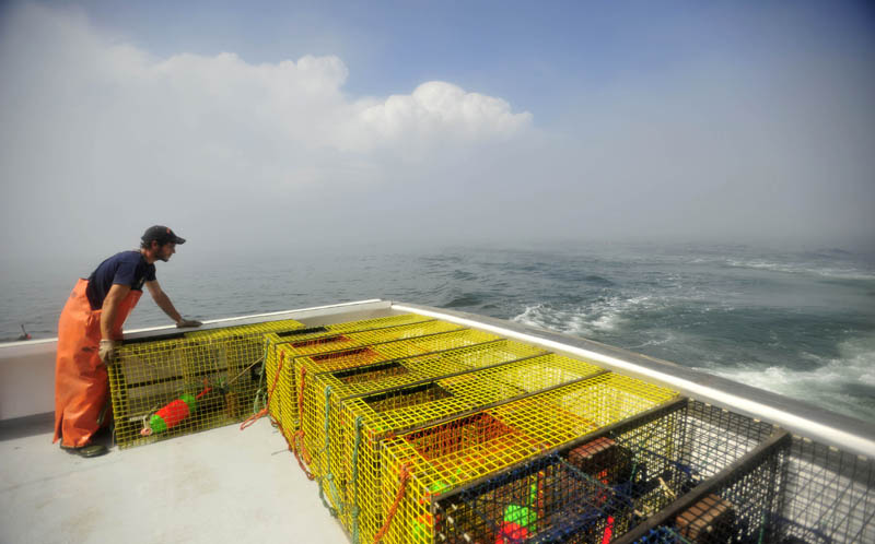 Carl Hayes, 18, stacks lobster traps on the back of his uncle's lobster boat, Overkill, on July 24. Jim Wotton, the captain and owner of the Overkill, picked up 50 traps to set further out in the ocean.