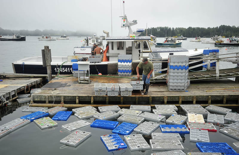 Jim Wotton, 44, captain of Overkill, crates his catch for shipment in Friendship Harbor on July 29. Wotton is at least the seventh-generation fisherman in his family.
