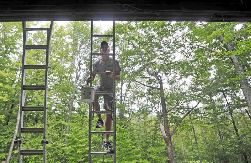 Mat Gross, of North New Portland, an employee with Backyard Farms, climbs the ladder to apply a fresh coat of paint on the Margaret Chase Smith Hall at Lake George Regional Park on the Canaan and Skowhegan town line today. The crew from Backyard Farms has been volunteering time at Lake George Regional Park helping with maintenance and general upkeep of the facility.
