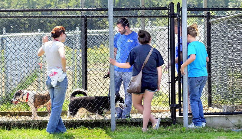 Staff and visitors congregate at an outside dog kennel at the Humane Society Waterville Area today.