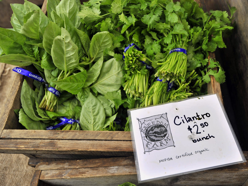 Prominent labels indicate that these bunches of cilantro from Freedom Farm are certified organic, something many produce shoppers desire.