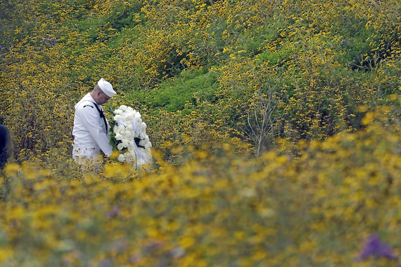 Navy Quartermaster Matthew Konchan of Johnstown, Pa., stands in a field of black-eyed Susan as he waits to participate in a wreath laying with Secretary of the Interior Sally Jewell during a memorial service at the Flight 93 National Memorial on Wednesday, Sept. 11, 2013 in Shanksville. (AP Photo/Gene J. Puskar)