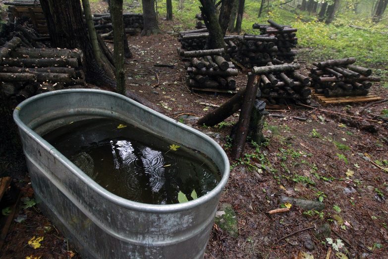 A water tank is used in the cultivation of shiitake mushrooms in Shrewsbury, Vt.