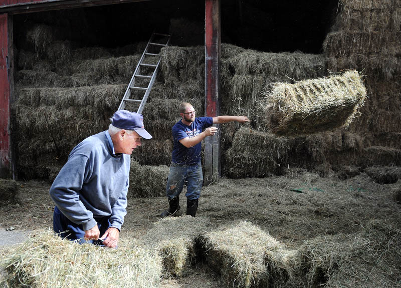 Sonny Black, left, and farmhand Randy Pierce toss hay bales Wednesday into a trailer at Black's Litchfield farm. First cut bales are selling briskly to other farms, Black said, with a second crop of hay expected to be cut this week.