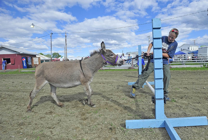 Thomas Bickfords, 13, of Clinton, attempts to coerce a mini-donkey named Maggie over the gate as they practice for the jumping portion of the donkey and mule show at the Clinton Lions Agricultural Fair on Friday.