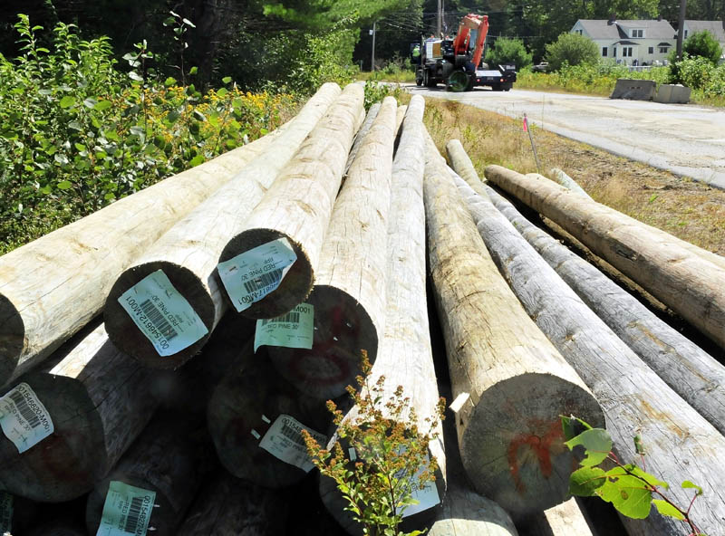 A pile of pine logs lays along the now-closed Whittier Road in Farmington, as a worker from E.L. Vining & Son prepares to unload one of two excavators today. The equipment will be used starting Tuesday to reinforce the eroding bank between the road and the Sandy River.
